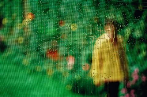 Untitled 4 by Matthew Tischler
