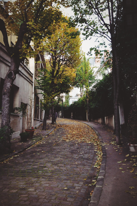 Paris Avenue Frochot